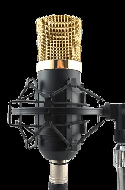 Mikrofon kaufen - mic-1603232_640-compressor